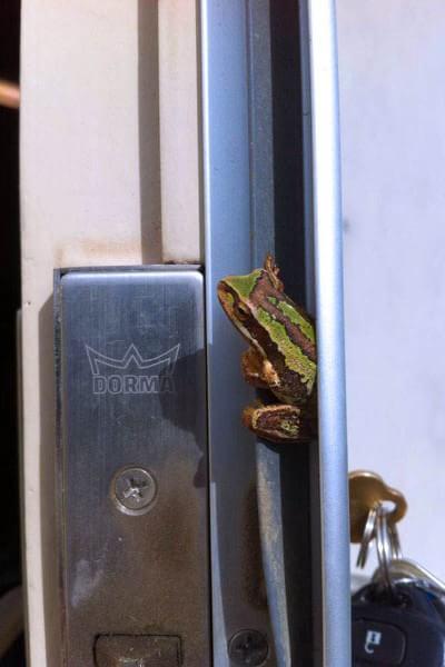 environmentally-friendly-locksmiths-in-melbourne
